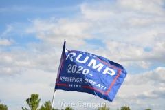 Keep America Great - Save IL - Nov 2020
